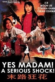Ver película A Serious Shock! Yes Madam!