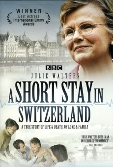 Ver película A Short Stay in Switzerland