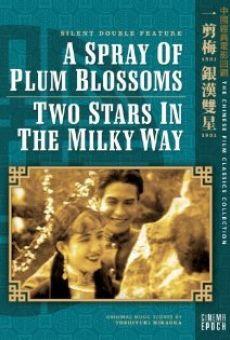 Ver película A Spray of Plum Blossoms