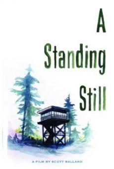 A Standing Still on-line gratuito