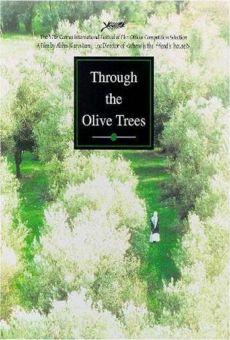 Ver película A través de los olivos