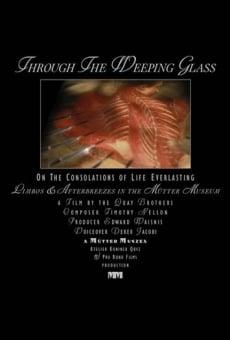 Ver película A través del cristal de las lágrimas: Sobre los consuelos de la vida eterna