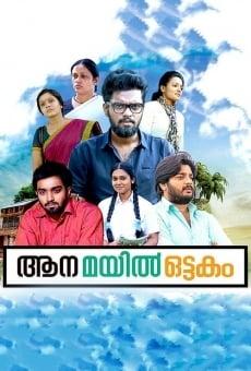 Ver película Aana Mayil Ottakam