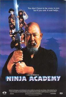 Ver película Academia de Ninjas