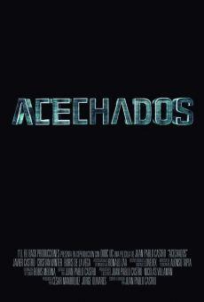 Ver película Acechados