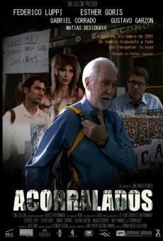 Acorralados (Verano amargo) online free