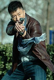 Películas de Honglei Sun