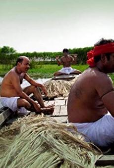 Películas de Majnun Mijan