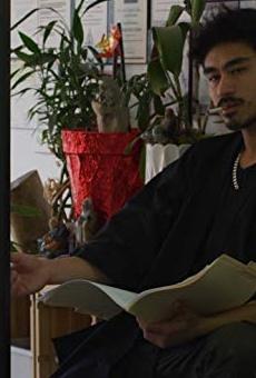 Películas de Tyce Francois