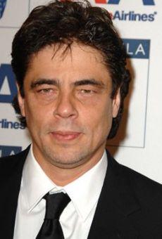 Películas de Benicio Del Toro
