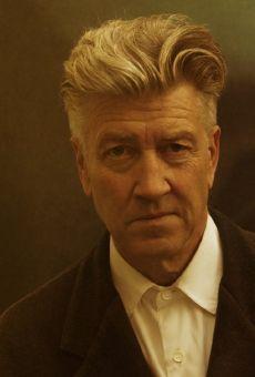 Películas de David Lynch