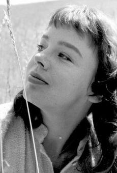 Películas de Janet Munro