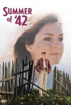 Ver película Adolescencia