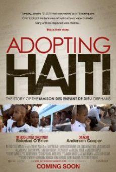 Adopting Haiti online