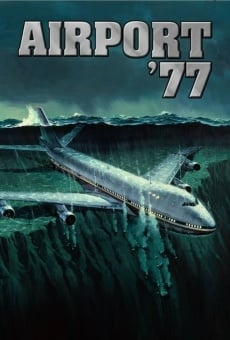 Ver película Aeropuerto 77