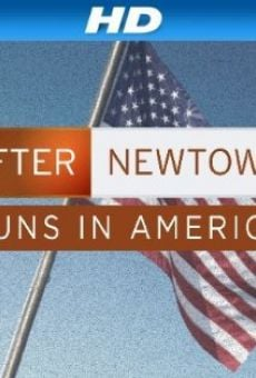 After Newtown: Guns in America online