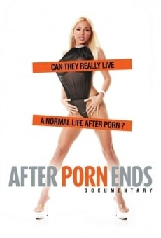 Cuando se acaba el porno online