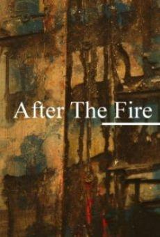 Ver película After the Fire