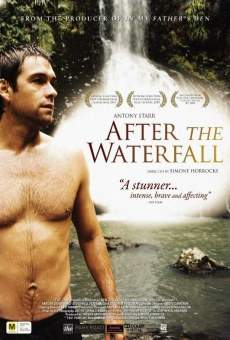 Ver película After The Waterfall