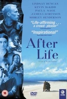 Ver película AfterLife