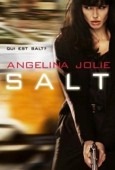 Ver película Agente Salt