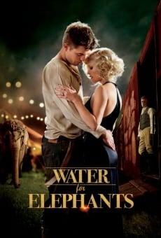 Ver película Agua para elefantes
