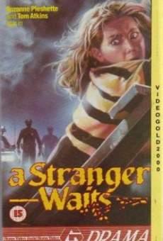 Ver película Aguarda un extraño