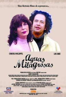 Ver película Aguas milagrosas