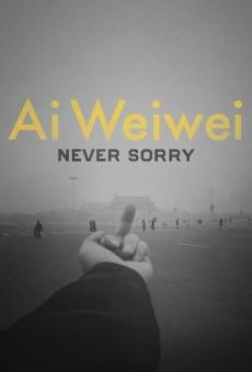 Ver película Ai Weiwei: Never Sorry