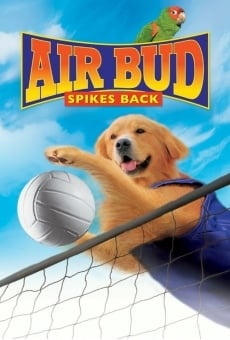 Air Bud: Spikes Back on-line gratuito