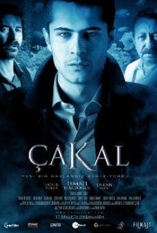 Ver película Çakal