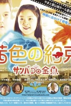Ver película Los peces de colores se van a casa
