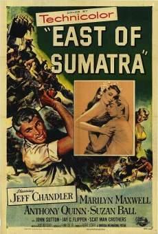 Ver película Al este de Sumatra