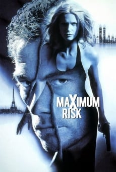 Ver película Al límite del riesgo