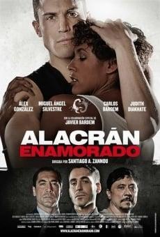 Ver película Alacrán enamorado
