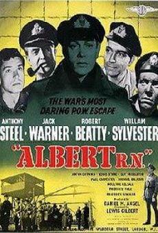 Ver película Albert R.N.