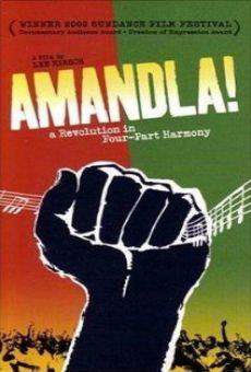Ver película Amandla! A Revolution in Four Part Harmony