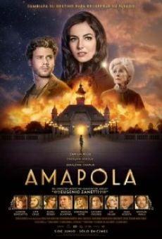 Watch Amapola online stream