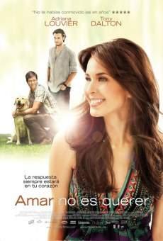 Ver película Amar no es querer