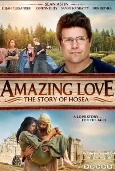 Ver película Amazing Love