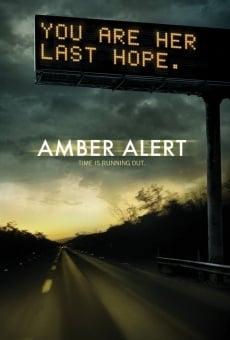 Ver película Amber Alert