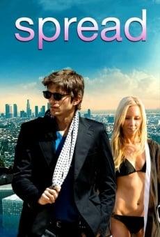 Ver película American Playboy