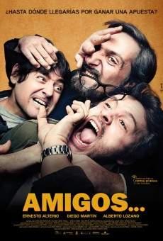 Ver película Amigos...