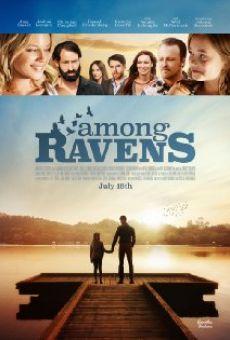 Ver película Among Ravens