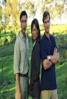 Ver película Amor en Saigón