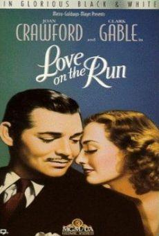 Ver película Amor entre espías
