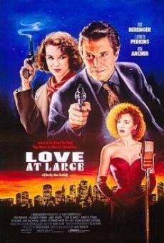 Ver película Amor perseguido