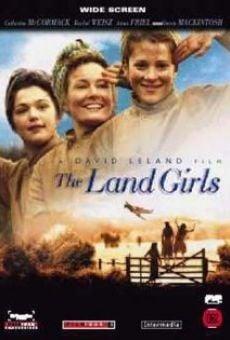Ver película Amores en tiempos de guerra