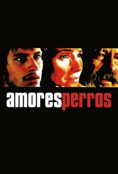 Amores Perros Online Free