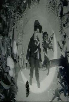 Ver película Amour noir et amour blanc